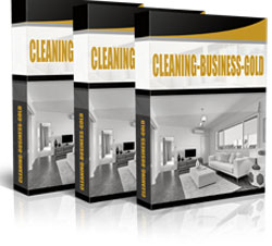 Cleaning Business Gold